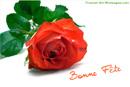 Fête des mères - Bonne fête avec des roses