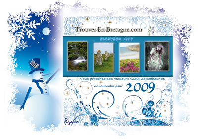 Meilleurs voeux pour 2009 !