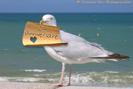 http://trouver-en-bretagne.com/images/ecards/client/Anniversaire-Mouette_bon_anniversaire.jpg