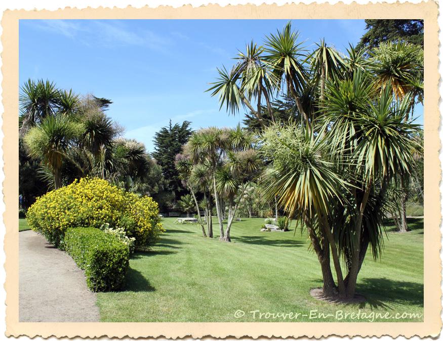 Le jardin exotique georges delaselle sur l 39 ile de batz - Photo jardin exotique ...